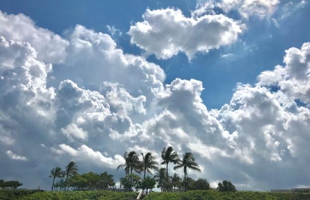 Jup Beach sky